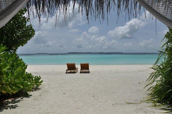 The Sun Siyam Iru Fushi Maldives: Вид из беседки на лежаки