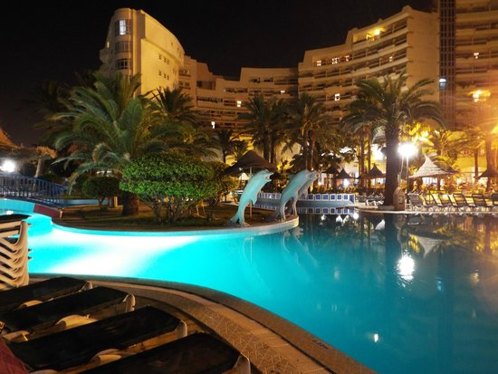 Riadh Palms Hotel: Pool ( night )
