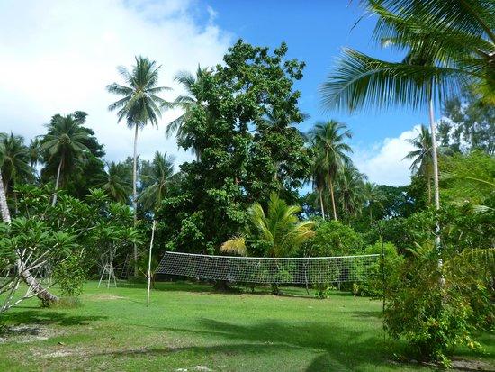 Lissenung Island Resort : Volley ball court