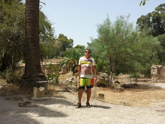 Carthaginian Ruins: Руины Карфагена