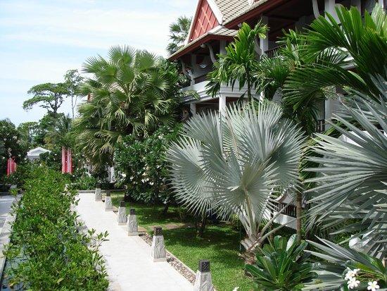 Novotel Samui Resort Chaweng Beach Kandaburi : room