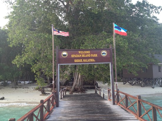Scuba Junkie Mabul Beach Resort : Last day