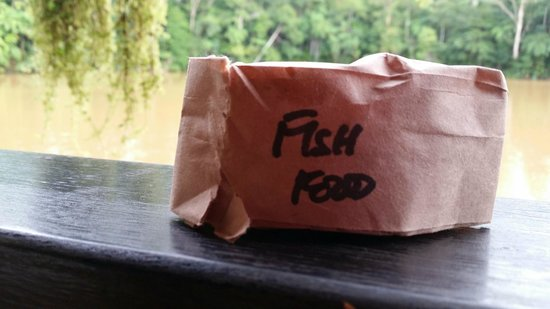Colo I Suva Rainforest Eco Resort: Little packets of fish food left on the tables.