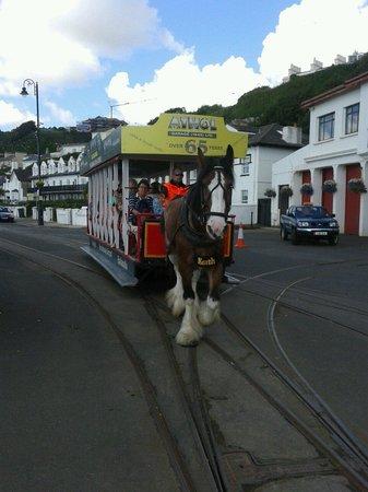 Douglas Bay Horse Tramway : Horse tramway.