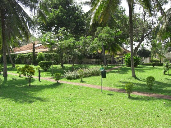 Tamarind Tree Hotel: Grounds