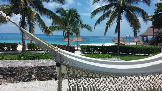 Presidente Inter-Continental Cozumel Resort & Spa: beach front deluxe...view from patio