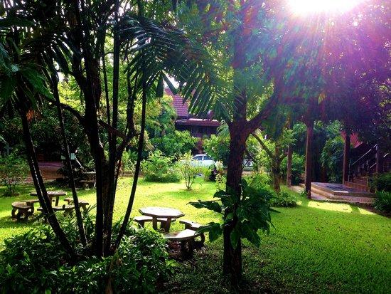 Baan Thai Resort : garden