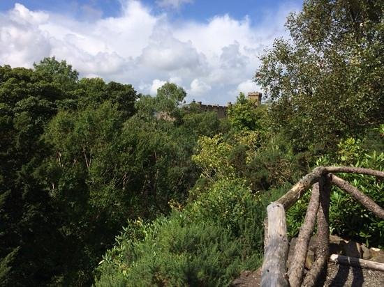Dunvegan Castle & Gardens: Viewing point near the entrance