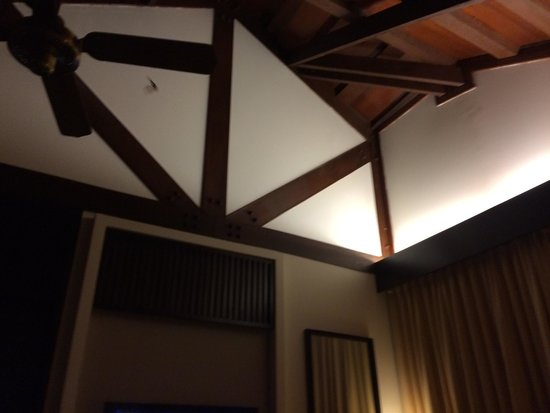 Meritus Pelangi Beach Resort & Spa, Langkawi: Bats flying in my room they fail to catch it and change my room !