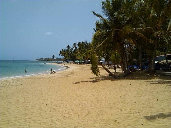 Grand Bahia Principe El Portillo : plage coté droit