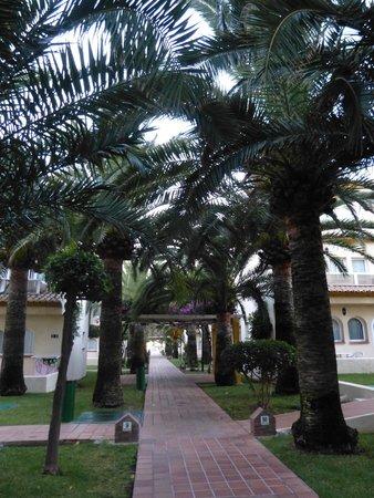 Hotel Pueblo Camino Real : Allée menant à la piscine
