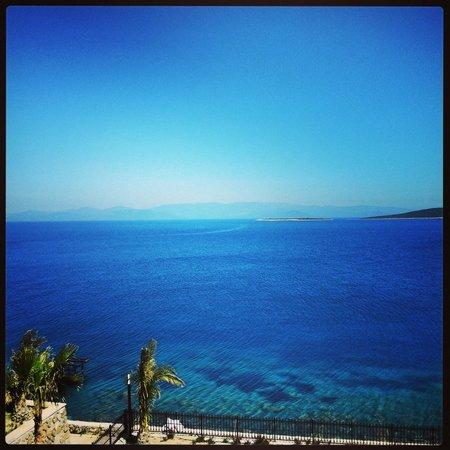 The Blue Bosphorus Hotel: harika bir manzara