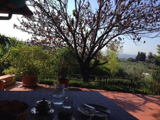 B&B Olivi e Dintorni : Vista dal terrazzo della colazione