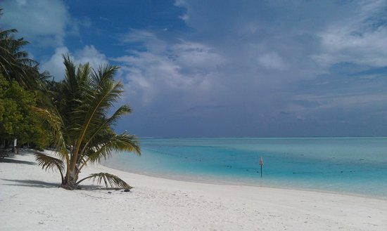 Sun Island Resort and Spa : Пляж