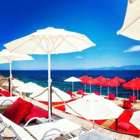 The Blue Bosphorus Hotel: tao beach club