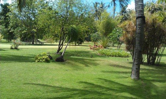 Sun Island Resort and Spa : Территория острова