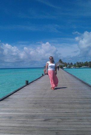 Sun Island Resort and Spa : Деревянный мостик