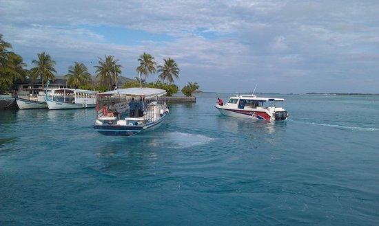 Sun Island Resort and Spa : Технический причал