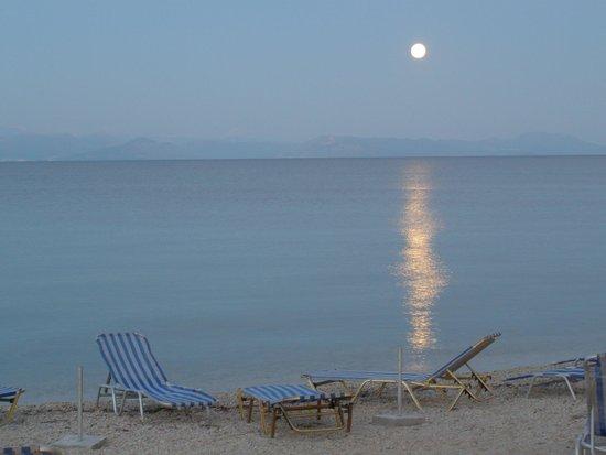 Hotel Avra: The beach