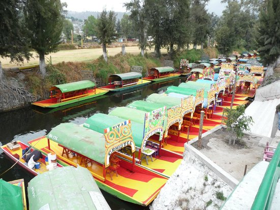 Expensive Mariachi 39 S Picture Of Floating Gardens Of Xochimilco Mexico City Tripadvisor