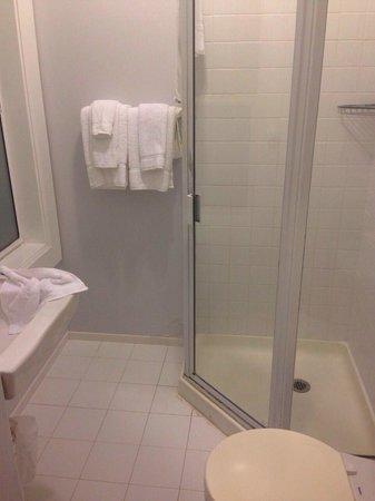 Venice Beach Suites & Hotel: bathroom