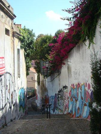 Miradouro da Senhora do Monte : street nearby