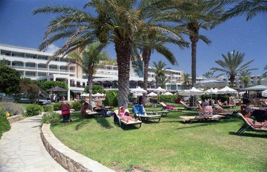 Constantinou Bros Athena Beach Hotel: Sun lounger lawns at rear of hotel