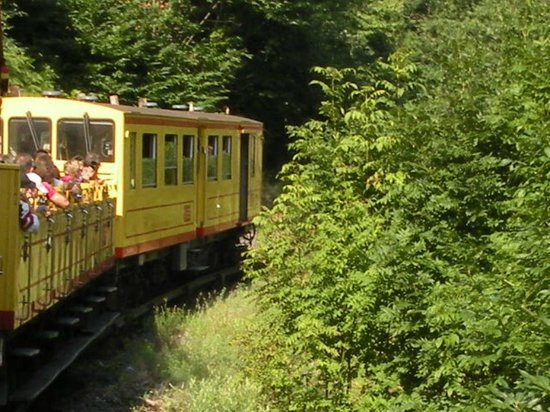Le Train Jaune: The train winding up the mountain