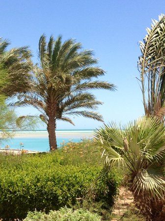 Movenpick Resort & Spa El Gouna: View from the pool
