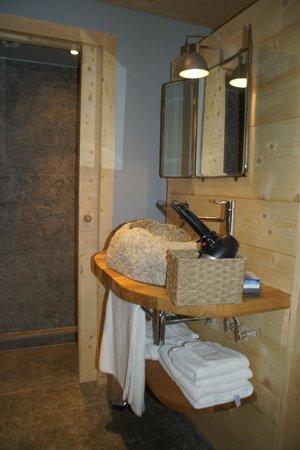 Les Rives d'Argentiere: salle de bain