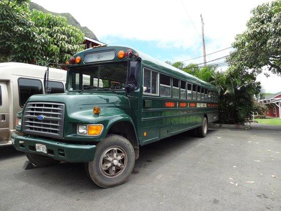 Kualoa: The transport buses.