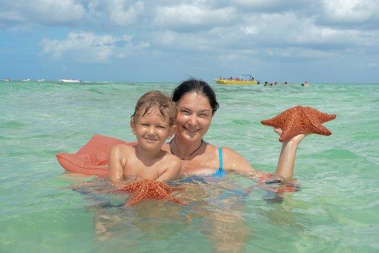 Viva Wyndham Dominicus Beach: starfish