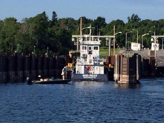 Lake Champlain: Miss Piggy