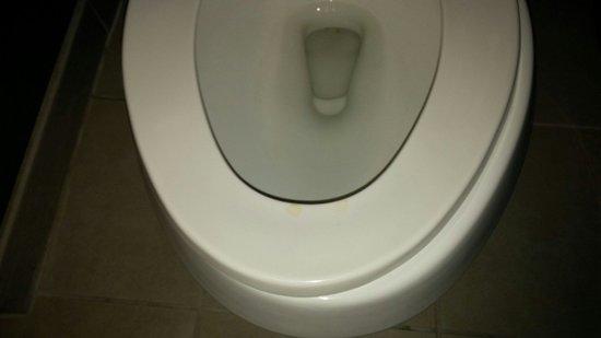 "Hampton Inn New Albany: Urine on toilet seat; toilet seat hinge broken so it ""slides"""