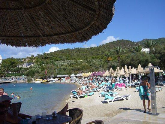 Hotel Samara: fijn strand