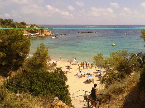 Portals Palace Hotel : plage de Portals Nous à 5 mn