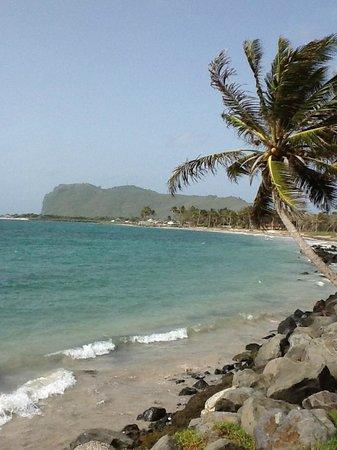Coconut Bay Beach Resort & Spa: Beach view