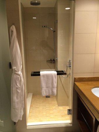 Four Seasons Hotel Denver: shower