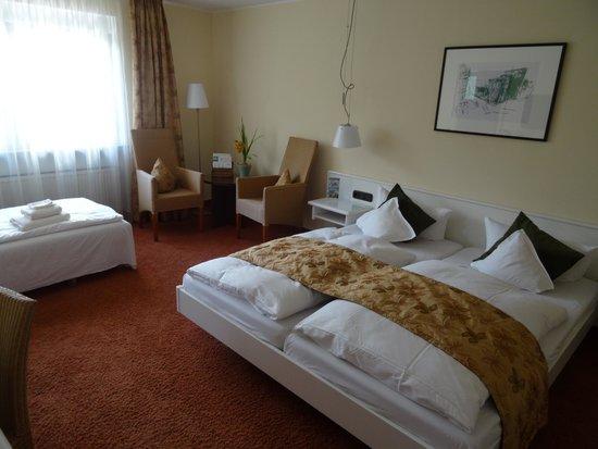 Hotel Deutscher Hof: Room 42