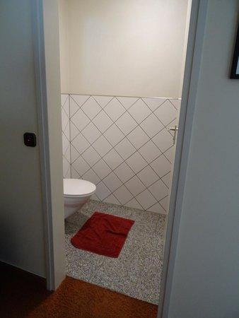 Hotel Deutscher Hof: Toilet room (sink inside)