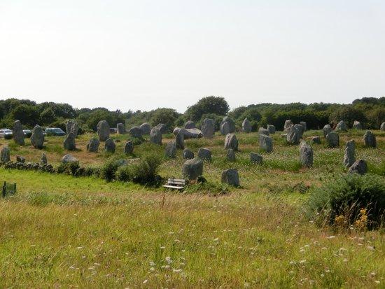Megaliths of Carnac : Petitis