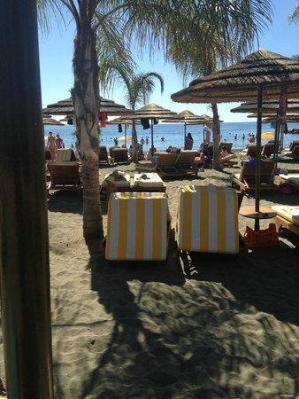 Four Seasons Hotel: beach