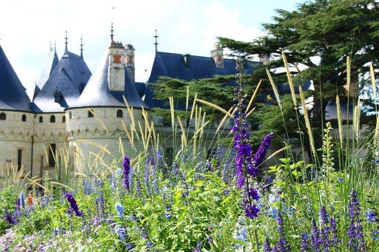Domain of Chaumont-sur-Loire: Het kasteel vanuit het park