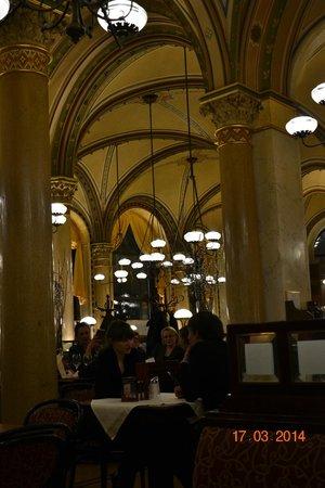 Cafe Central : Потолок в кафе централ