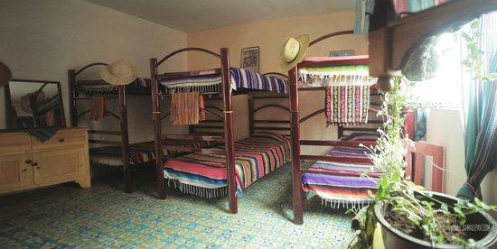 Hostel El Nagual: Dorms / cuarto compartido