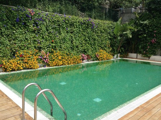 Relais Paradiso: Hotel Pool