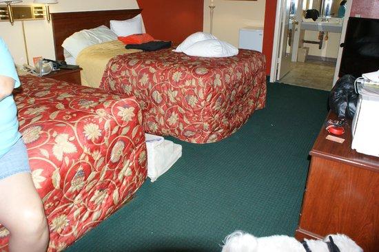 Howard Johnson Inn - Historic ST. Augustine FL: Room