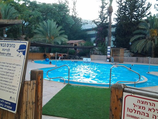 Restal Hotel : pool area