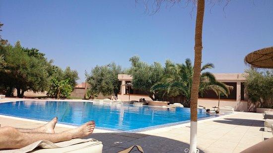 La Maison des Oliviers : The pool
