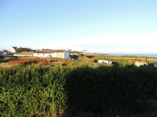 Hellarcher Farm B&B: Panorama dalla camera